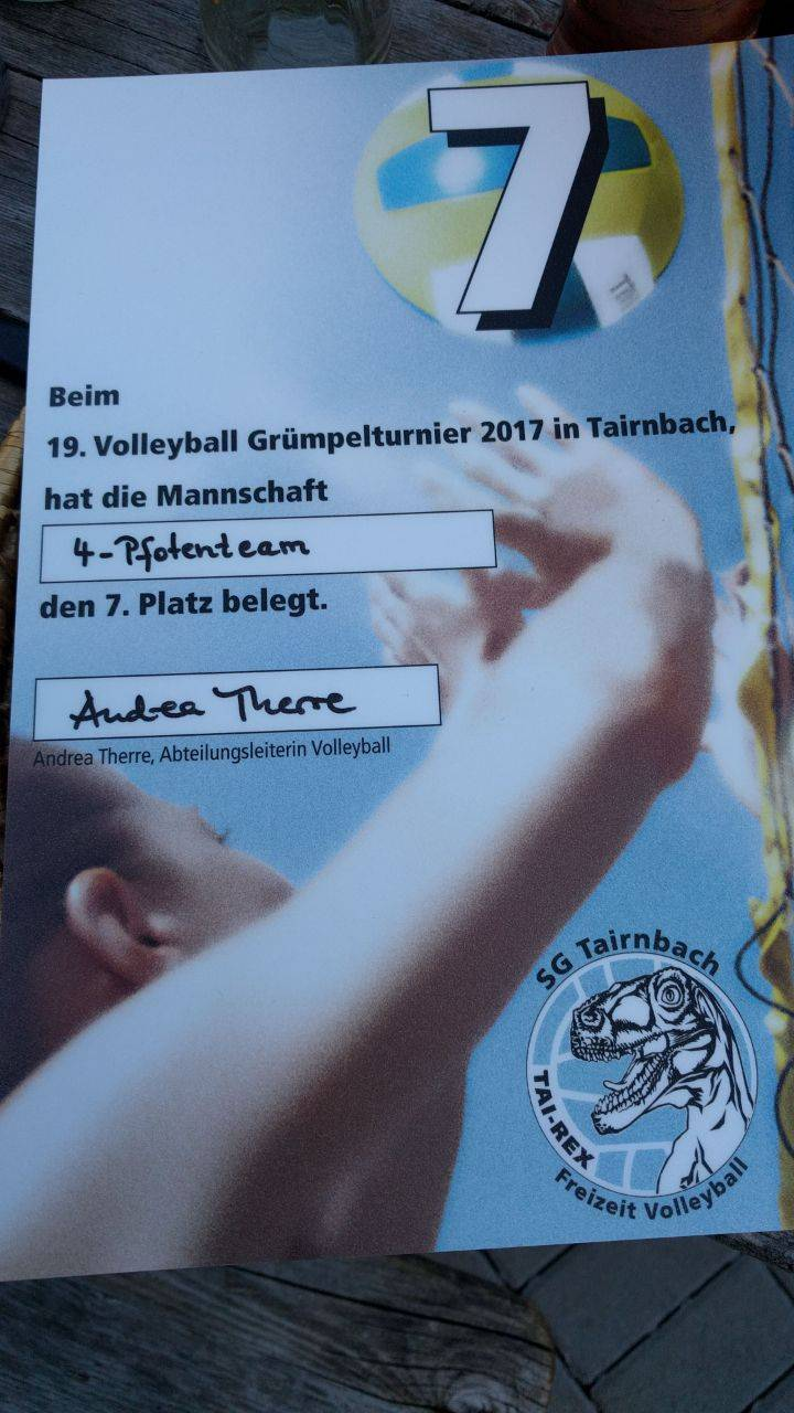 Volleyballturnier Platz 7